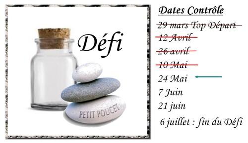 Défi Petit Poucet (Bilan N°3)