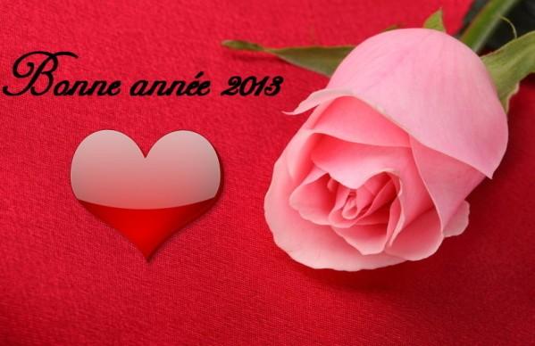 bonne-annee-2013-fleur-coeur.jpg