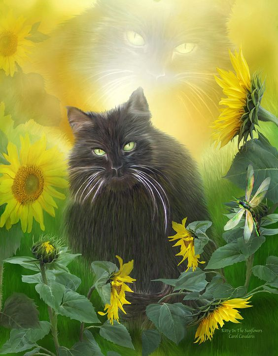 Kitty In The Sunflowers Mixed Media  - Kitty In The Sunflowers Fine Art Print