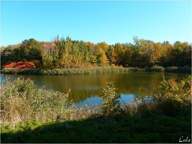 Parc d'Angrignon