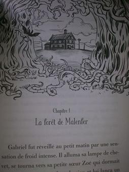 Malenfer Tome 1 : La for?t des t?n?bres, Cassandra O'Donnell