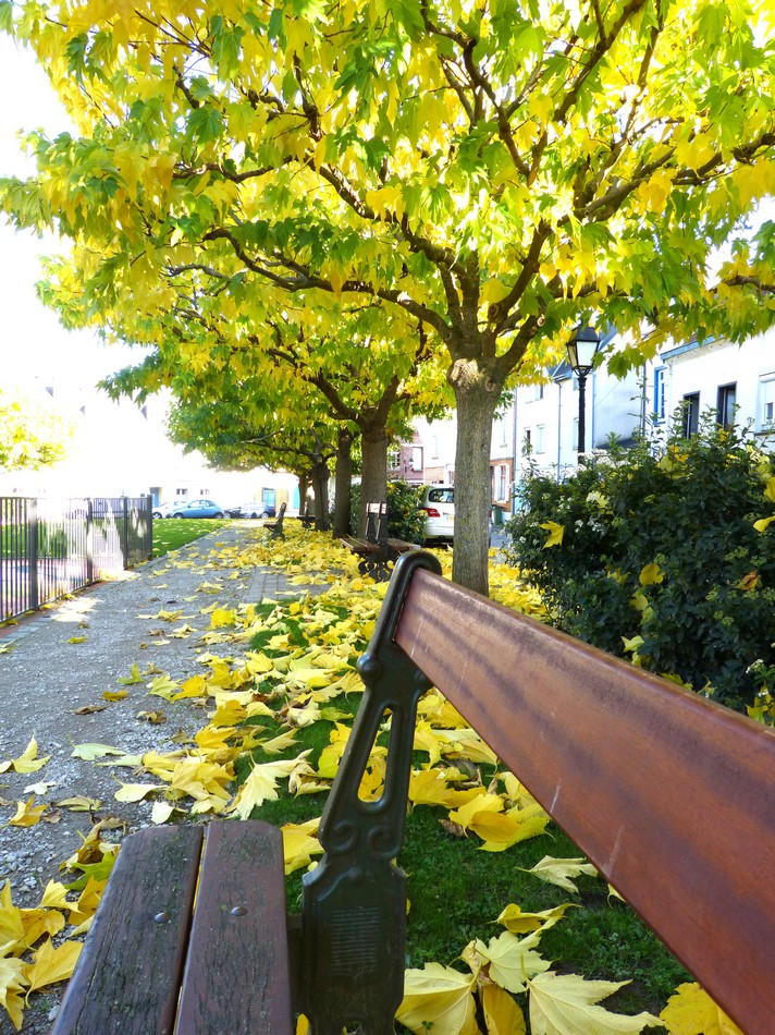Promenade au Quartier Saint-Leu