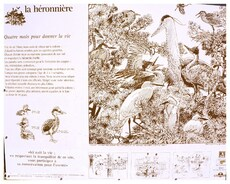 La Héronnière de Notre Dame des Monts 85