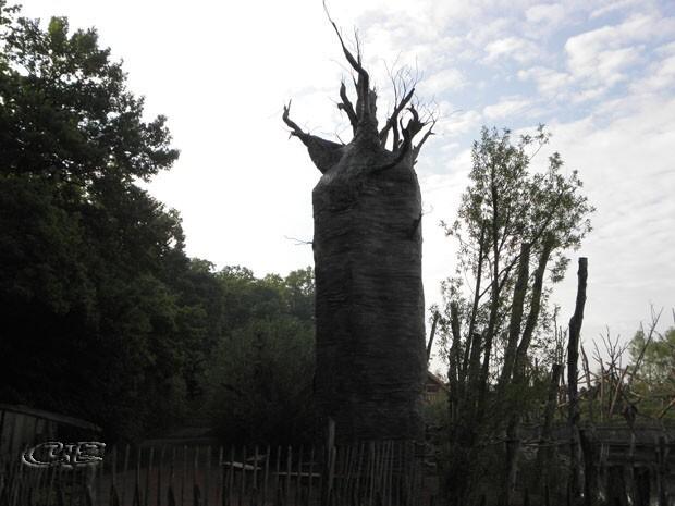 Parc de Ste Croix baobab