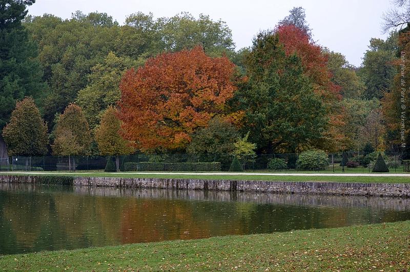 Rambouillet en manteau d'automne...