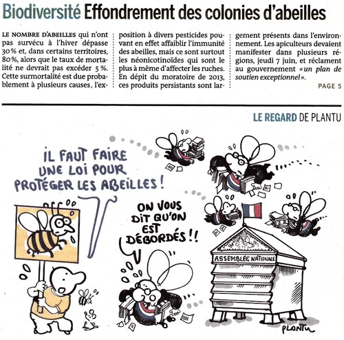 Article du Monde Effondrement des colonies d'abeilles en France