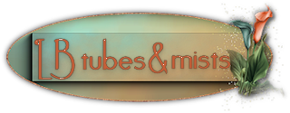 Adresse des Tubeurs - 2 -