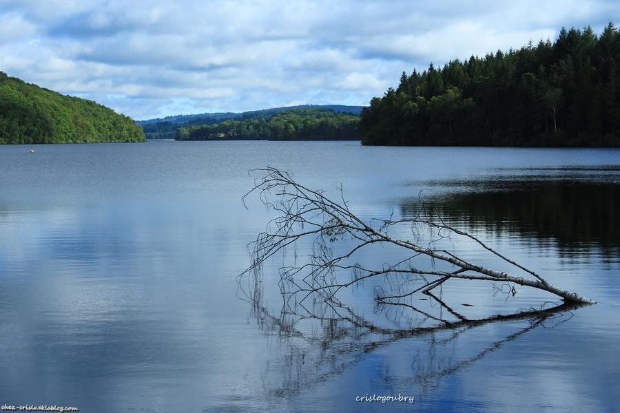 Lac de Vassiviere ( 'Limousin )