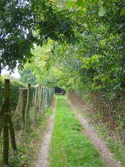Le chemin de l'allée des granges