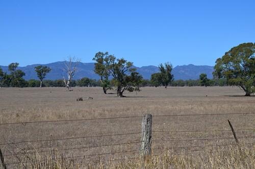 Circuit Warrnambool à Adelaide par le parc Coorong - Retour d'Adelaïde par la vallée Barossa et la vallée de la Murray