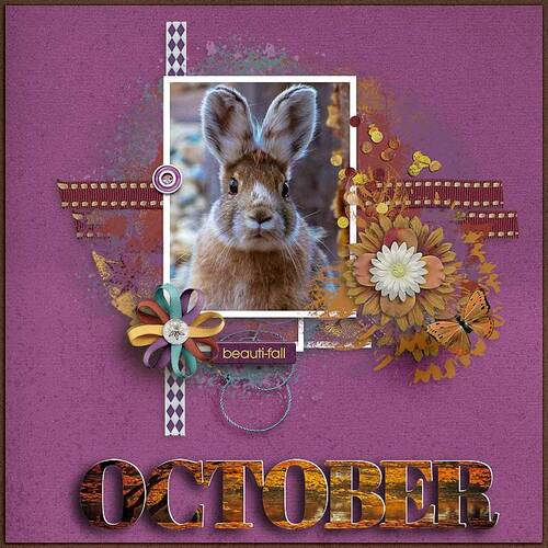 Months Of The Year Photo by dentelle scrap