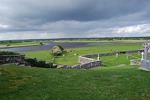 Clonmacnoise - Les paturage et la rivière Shannon 2