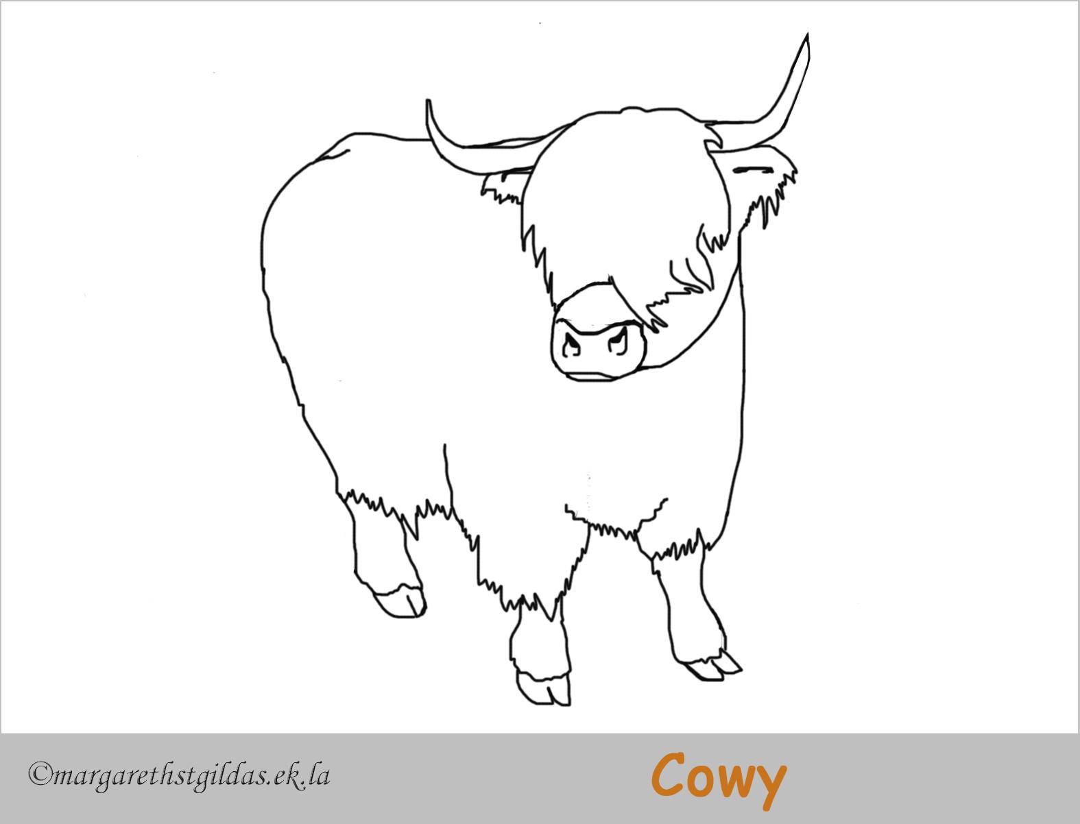 coloriage cowy, la petite vache des highlands - margareth