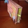 mini lana - une belle histoire  - 05.07.11 0012(1)