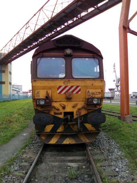 Class 66229 à Montoir