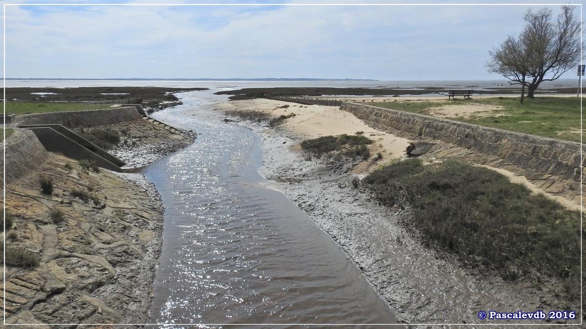 En longeant la plage entre Lanton et Cassy - fin Mars 2016 - 1/8