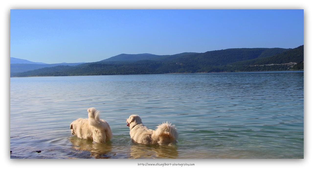 C'est l'été ... au Bain !