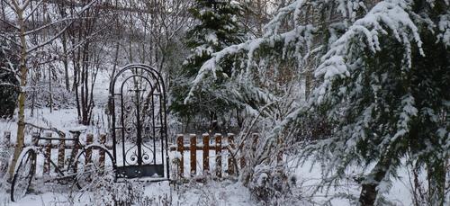 hiver dans le jardin de l'abbaye 2017