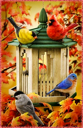Petits Oiseaux.