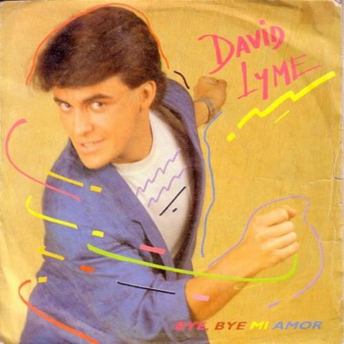 David Lyme - Bye Bye Mi Amor (1987)