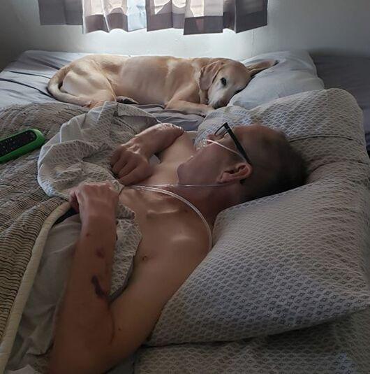 Le chien refuse de quitter son propriétaire mourant - ils décèdent à quelques heures d'intervalle