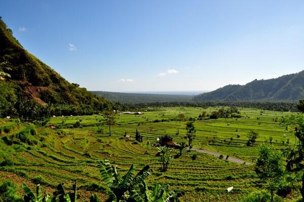 Indonesie3-0310.jpg