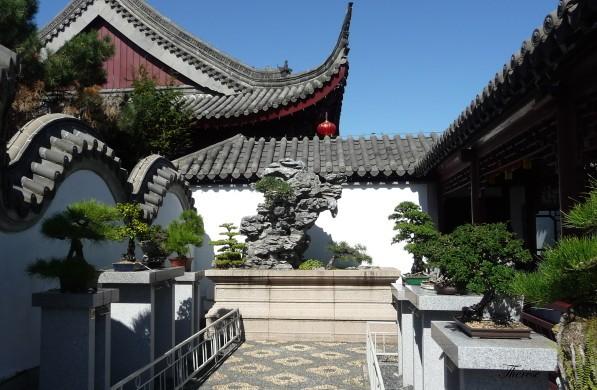 Jardin botanique chinois(58)
