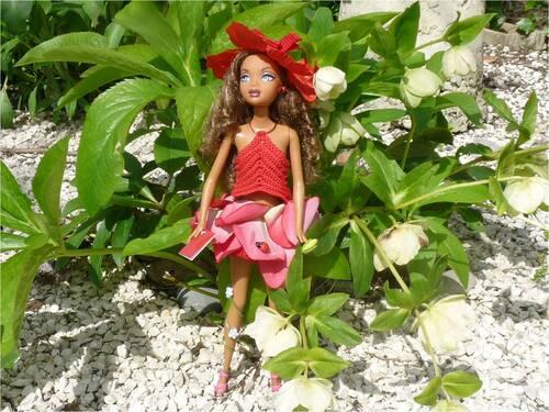 Rosélia à pipiouLand