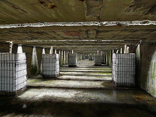plantations dans les chambres d'explosion des bombes
