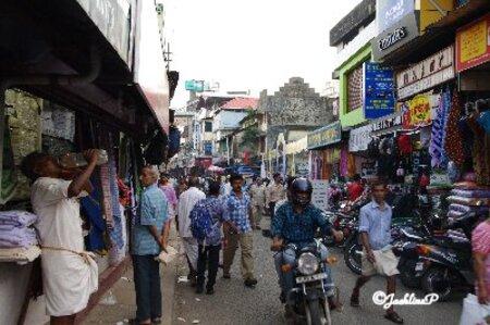 Inde du Sud (13) Cochin (2)