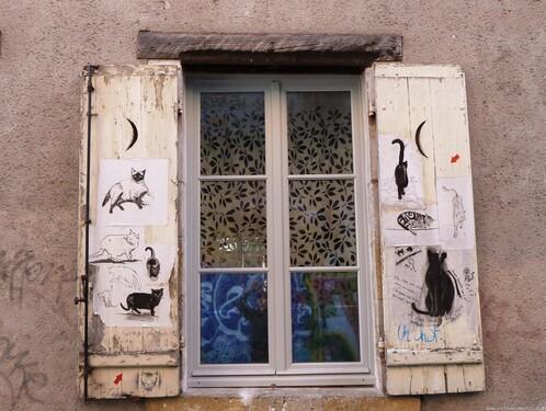 12 - Des chats sur les murs suite