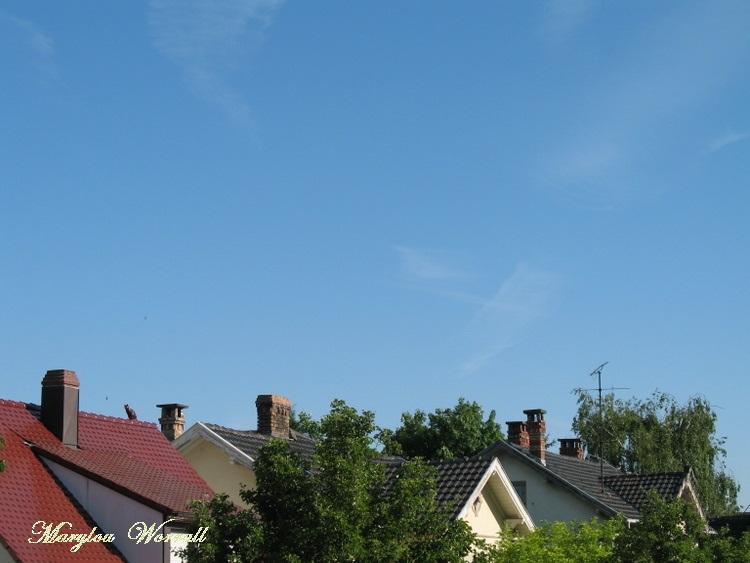 Ciel d'Alsace 216
