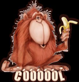 Coooool