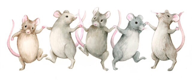 Word of the Week: 'quand le chat n'est pas là, les souris dansent' – French  Affliction