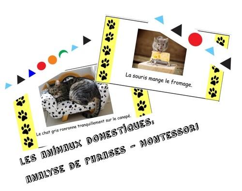 Analyse de phrases (montessori)