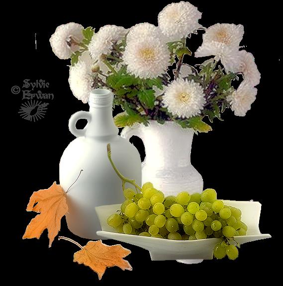 Tubes fleurs création 14