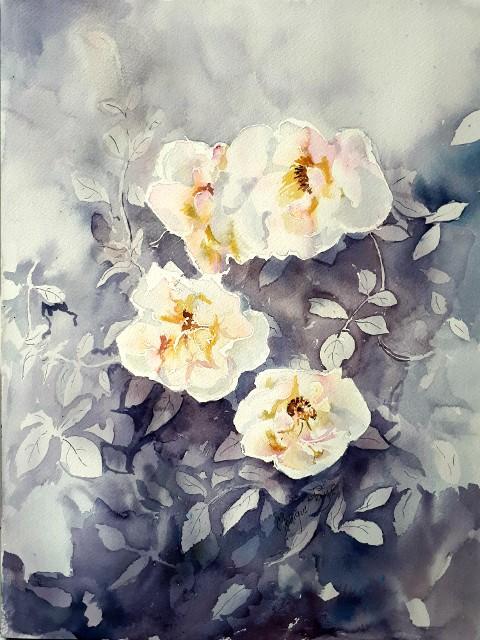 L'image contient peut-être: fleur, plante et nature