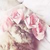 → Icônes flowers #12