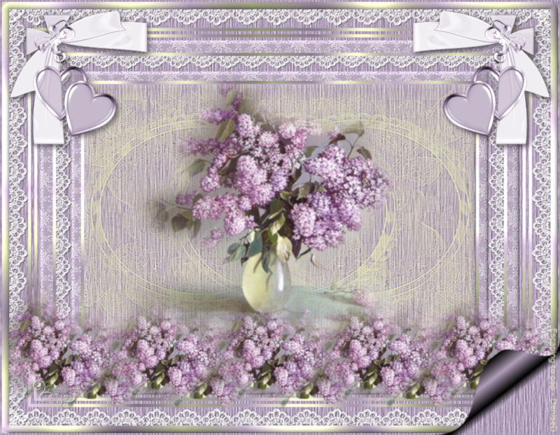 *** Lilacs and Lace  ***