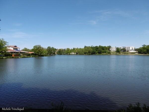 Une balade au Lac de Christus à SAINT PAUL LES DAX (40), le 6 mai...
