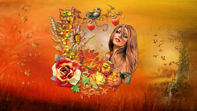 Super Tag d'automne 8