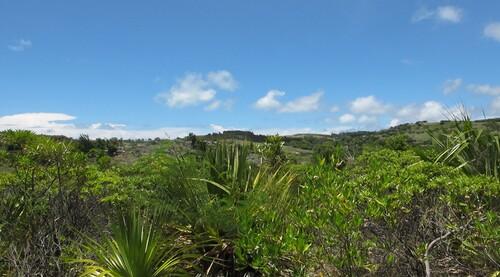 La réserve  François Leguat des tortues géantes, à Rodrigues