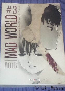 Mad World - tome 3