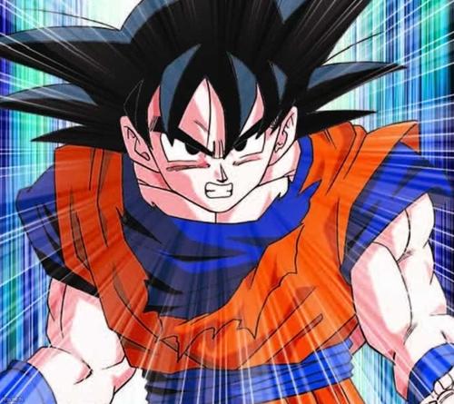 Sangoku(Goku)