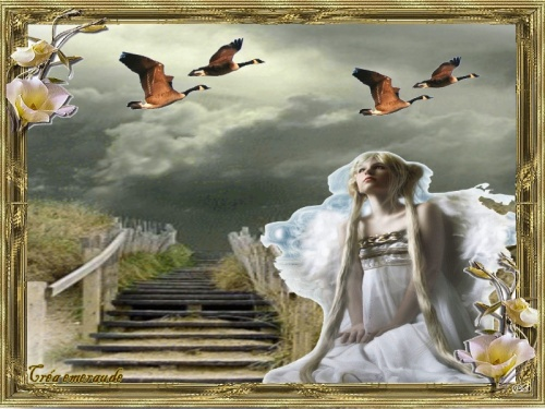 Un ange qui passe !