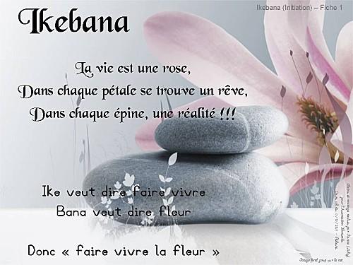 2012 01 17 ikebana