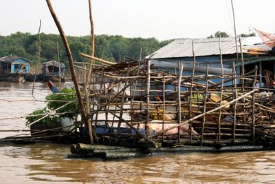 Blog de images-du-pays-des-ours :Images du Pays des Ours (et d'ailleurs ...), Lac Tonle Sap - Cambodge