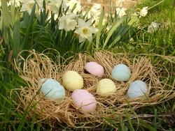 Les Oeufs de Pâques!