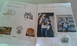 Ma mascotte Ludo et son journal de bord