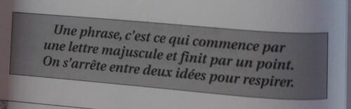 C / La phrase